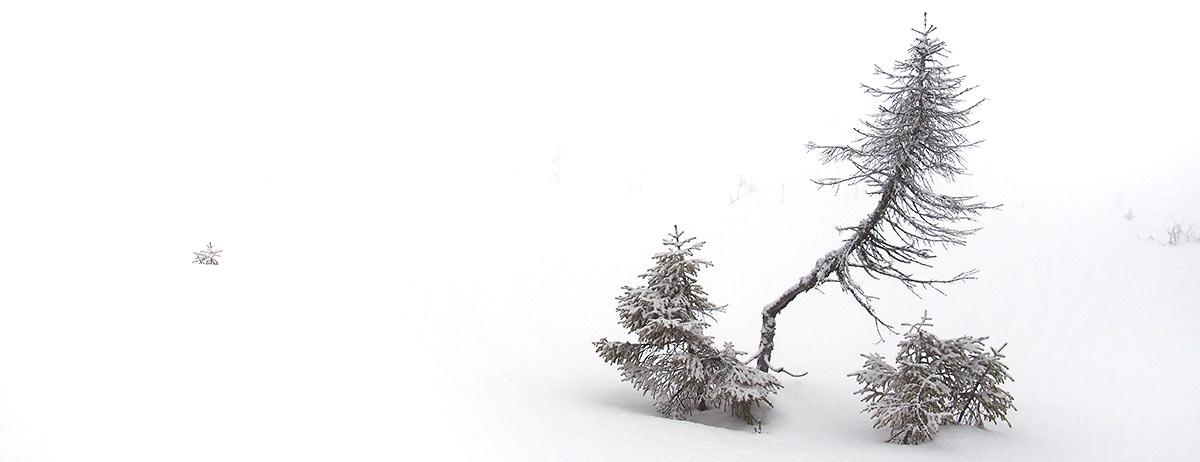 foto-hahnebach-winter
