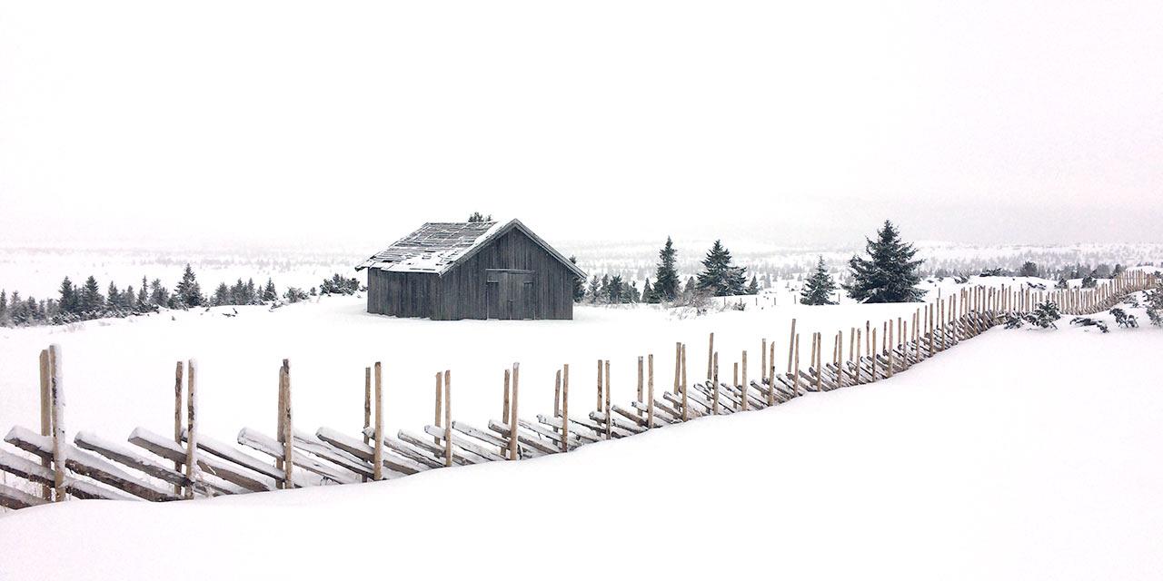foto-hahnebach-winterzaun