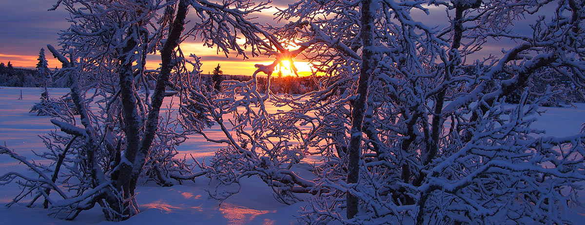 Foto Hahnebach Sonnenuntergang in Sjusjoen